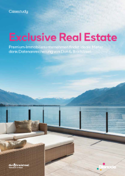 Exclusive Real Estates - Casestudy