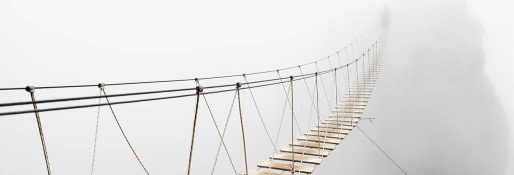 Bisnode building bridges